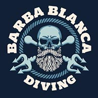 barba blanca diving la herradura